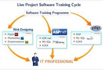 Programming Fundamentals Software Training